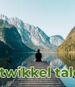 Waarom talent management en ontwikkeling onmisbaar is