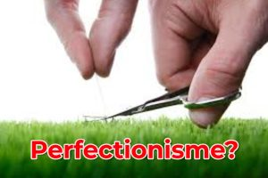 Perfectionisme - geenruzieophetwerk.nl